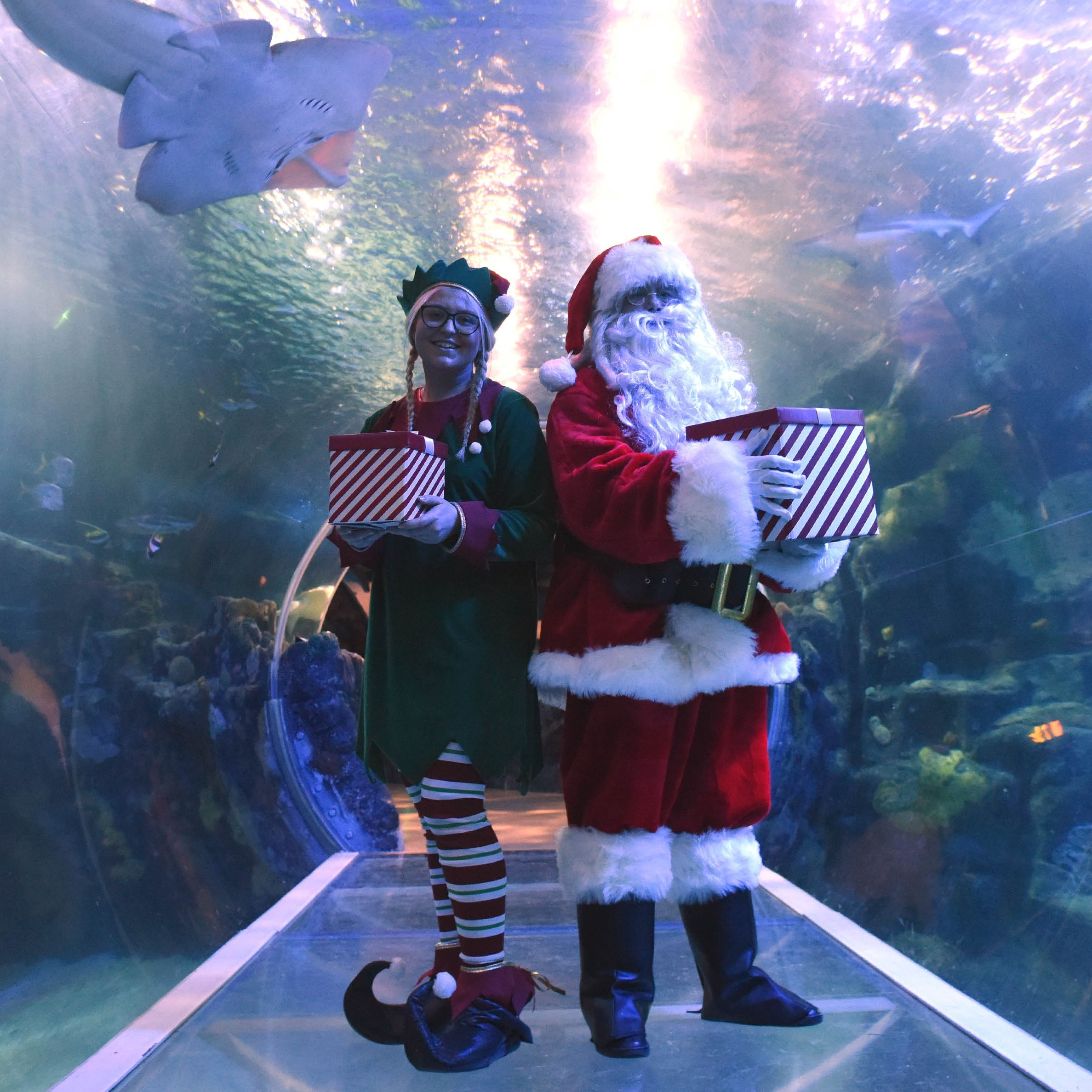 Santa And An Elf In The Ocean Tunnel At SEA LIFE