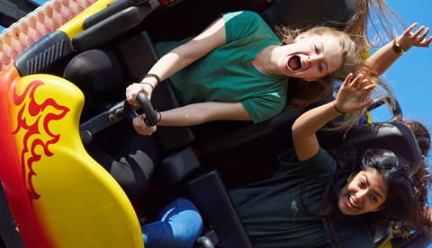 Dragon's Fury at Chessington World of Adventures Resort